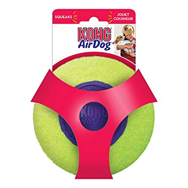 Kong - AirDog - Squeaker Disc Dog Toy - SALE