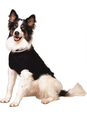 Fashion Pet Cable Sweaters