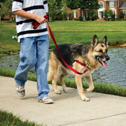 Pet Safe Radio Systems Easy Walk Harness X large Red