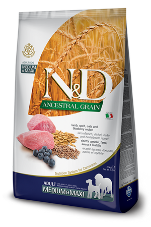 N&D (dog) Ancestral Grain Puppy Medium/Maxi Lamb, Spelt, Oats & Blueberry