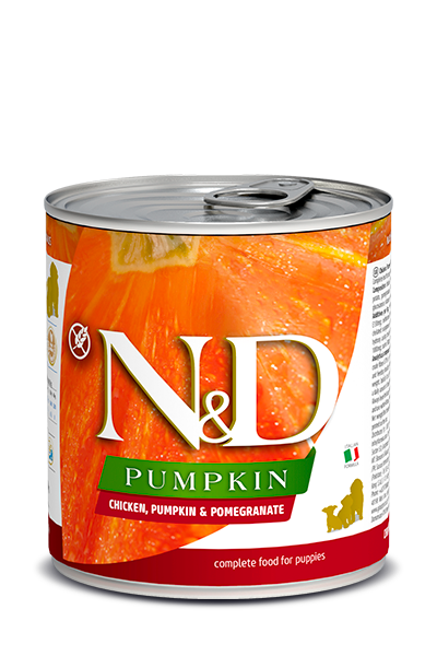 N&D Pumpkin Dog Chicken, Pumpkin & Pomegranate Puppy 10.5 oz