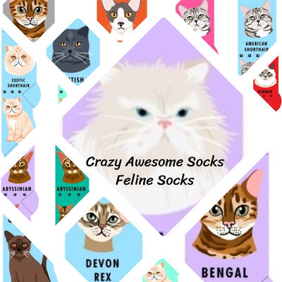 Foozys Feline Collection Socks