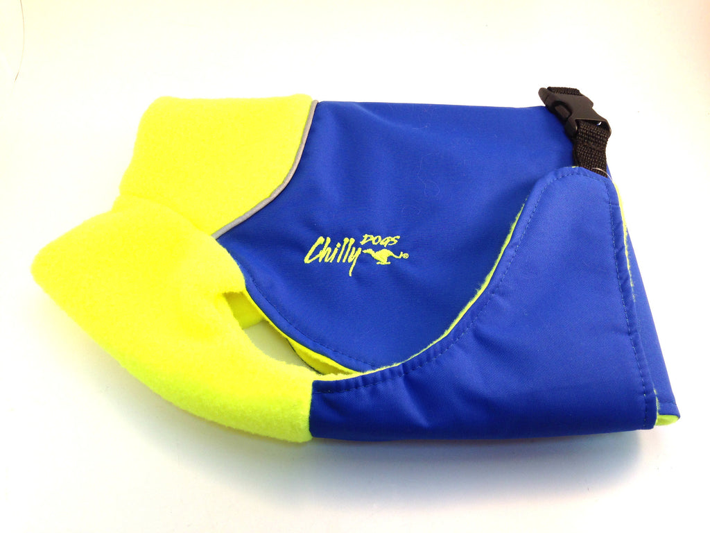 ChillyDogs - Great White North - Vibrant Yellow & Royal Blue SALE 25% Off