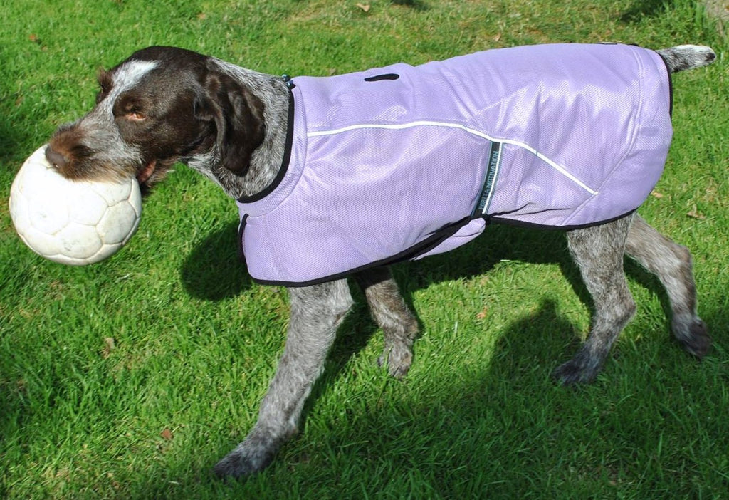 Hurtta Motivation Cooling Coat- 20""