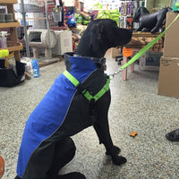 Premier Eco Easy Walk Harness SALE