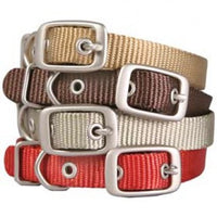 Hamilton - single nylon collar