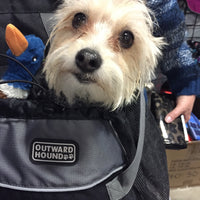 Kyjen Outward Hound - Pet Carrier - small SALE