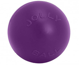 JollyPets Push-N-Play - Purple Ball