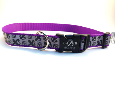 Lazier bright collar purple