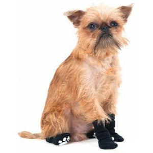 Fashion Pet Socks SALE