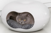 Moderna Doonut Cat House