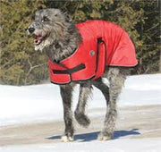 Shedrow - Tundra Dog Coat - Red