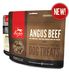 Orijen Angus Beef Dog Treat - 92g ( New )