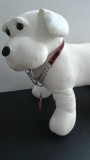 Pet Pro Adjustable Nylon/Choke Chain SALE