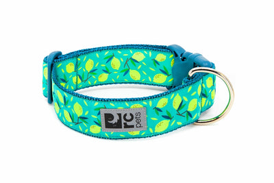 RC Pets Wide Clip Collar Lemonade