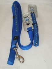 rogz frogskin fixed leash bones on blue