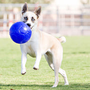 Jolly Pets - Jolly Soccer Ball