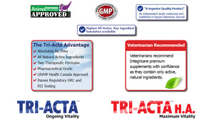 Tri-acta dog and cat supplement