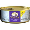 Wellness Beef & Salmon Formula 5.5 oz