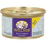 Wellness Beef & Salmon Formula 3 oz