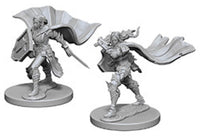 Pathfinder Deep Cuts Unpainted Miniatures: W4 Elf Female Paladin
