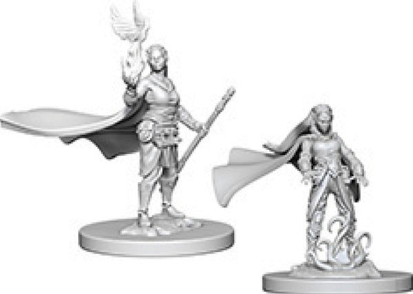Dungeons & Dragons Nolzur`s Marvelous Unpainted Miniatures: W4 Elf Female Druid