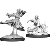 Dungeons & Dragons Nolzur`s Marvelous Unpainted Miniatures: W11 Female Human Monk