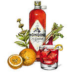 Load image into Gallery viewer, Mondino Amaro  Hand crafted organic bitter Aperitif from Bavaria