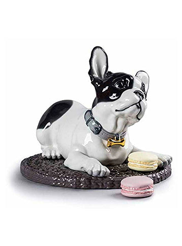 French Bulldog With Macaroon