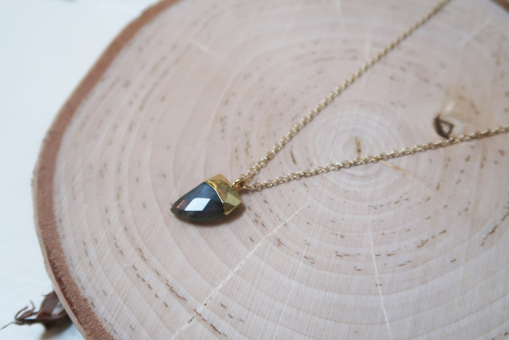 Horn Necklace - Labradorite