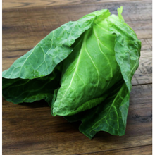 Load image into Gallery viewer, Kent Sweet Heart Cabbage (Hispy Cabbage)