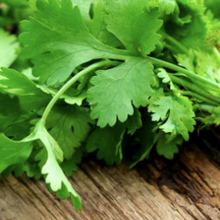 Load image into Gallery viewer, Coriander Bunch