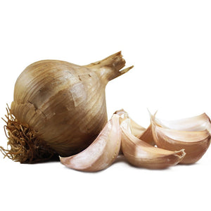 Large Smoked Garlic Bulb