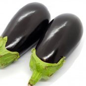 Two Isle of White Aubergines