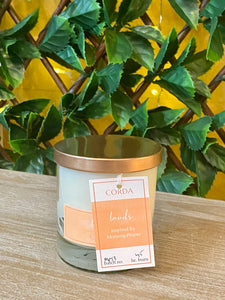 Corda Candle * LAUDS Morning Prayer | Citrus + Morning Dew + Juniper Berry