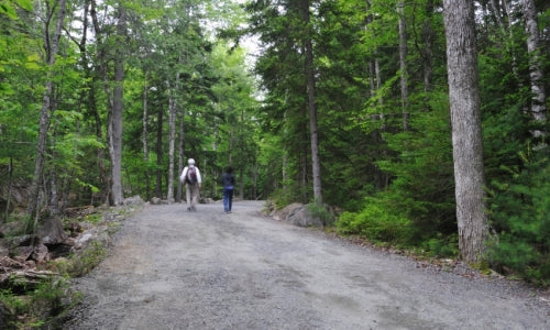photo credit: AcadiaNationalPark.com