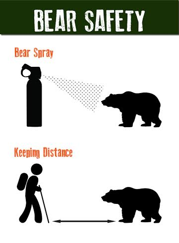 Bear Safety Chart