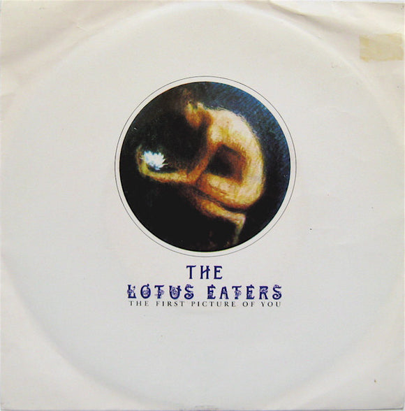 The Lotus Eaters - The First Picture Of You