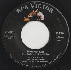 Boss Guitar / The Desert Rat