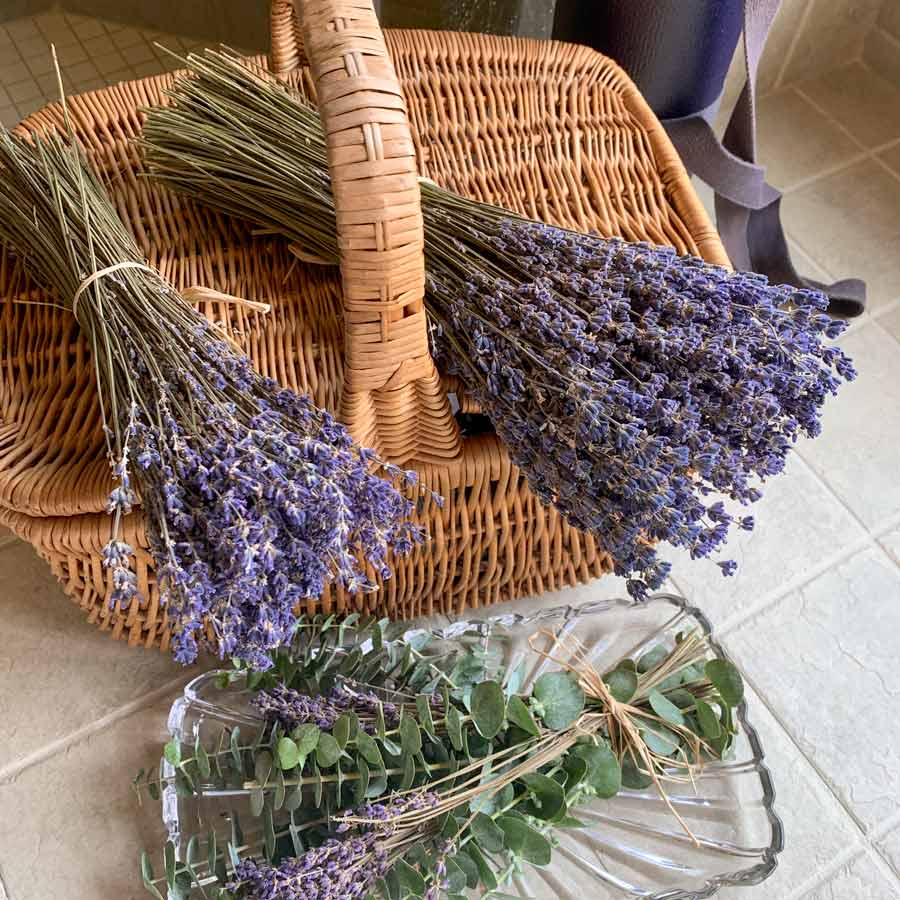 Large Lavender bundles on wicker basket with eucalyptus underneath