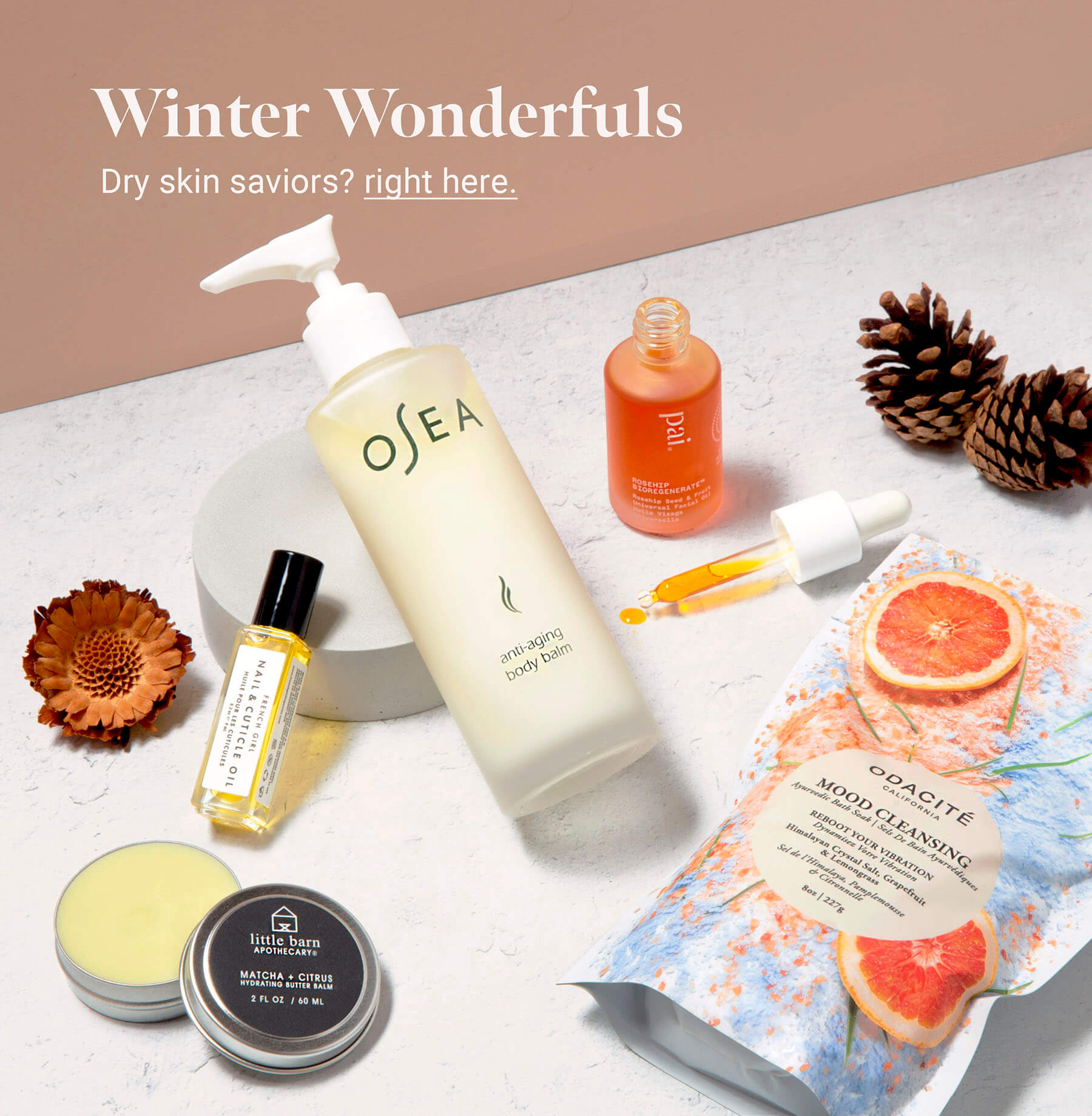 Winter Skin Collection