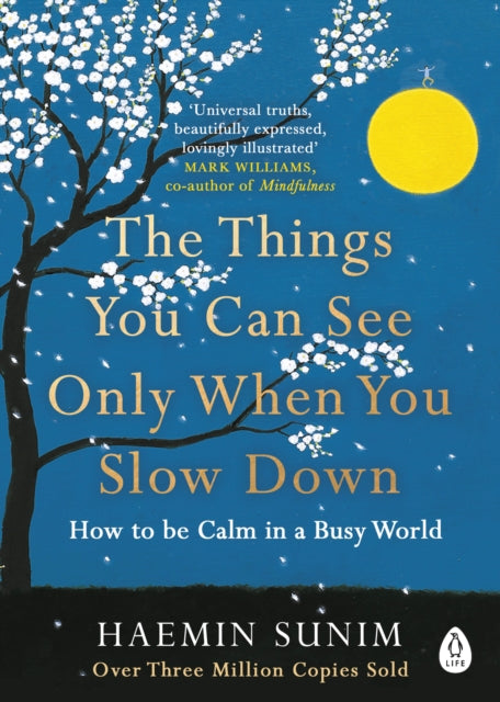 The Things You Can See Only When You Slow Down : How to be Calm in a Busy World-9780241340660