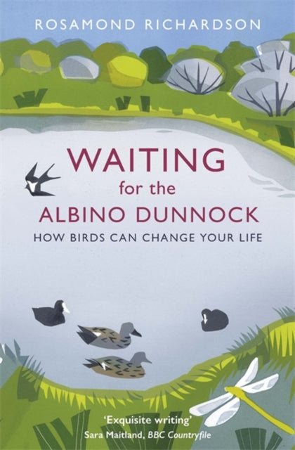 Waiting for the Albino Dunnock : How birds can change your life-9781474603010