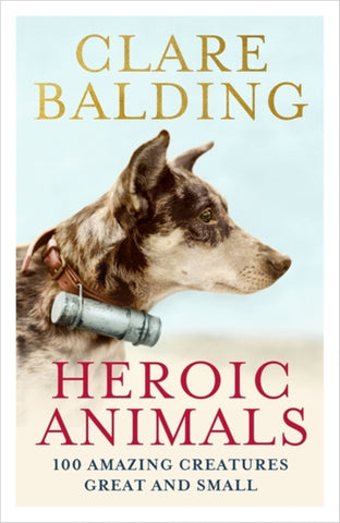 Heroic Animals : 100 Amazing Creatures Great and Small-9781529343823