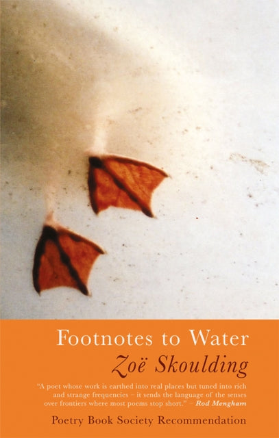 Footnotes to Water-9781781725269