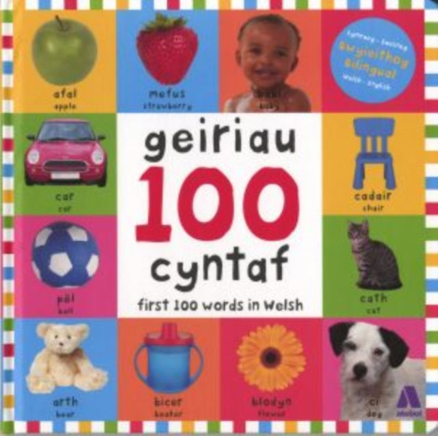 100 Geiriau Cyntaf/ First 100 Words in Welsh-9781912261109