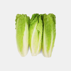 Hearts of Romaine | Woolco Foods