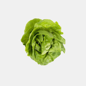 Boston Lettuce Bibb | Woolco Foods Grocery Delivery