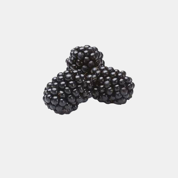 Blackberries, , 4-1/2 Pints