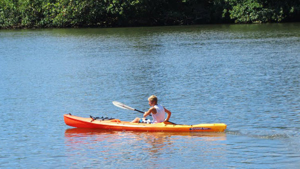 Wailua River & Secret Falls - Guided Kayak Tour